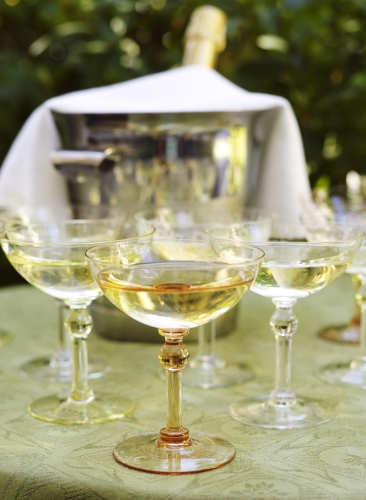 feast-champagne-glass+by+Giarimi+Design+slight+tints